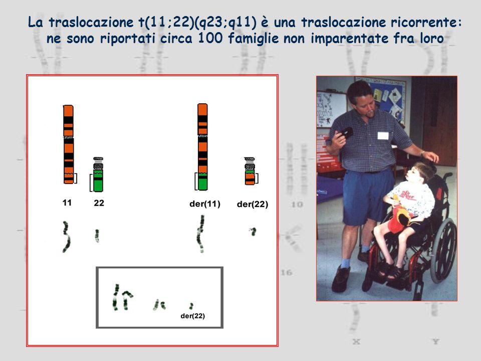 La traslocazione t(11;22)(q23;q11) è una traslocazione ricorrente: