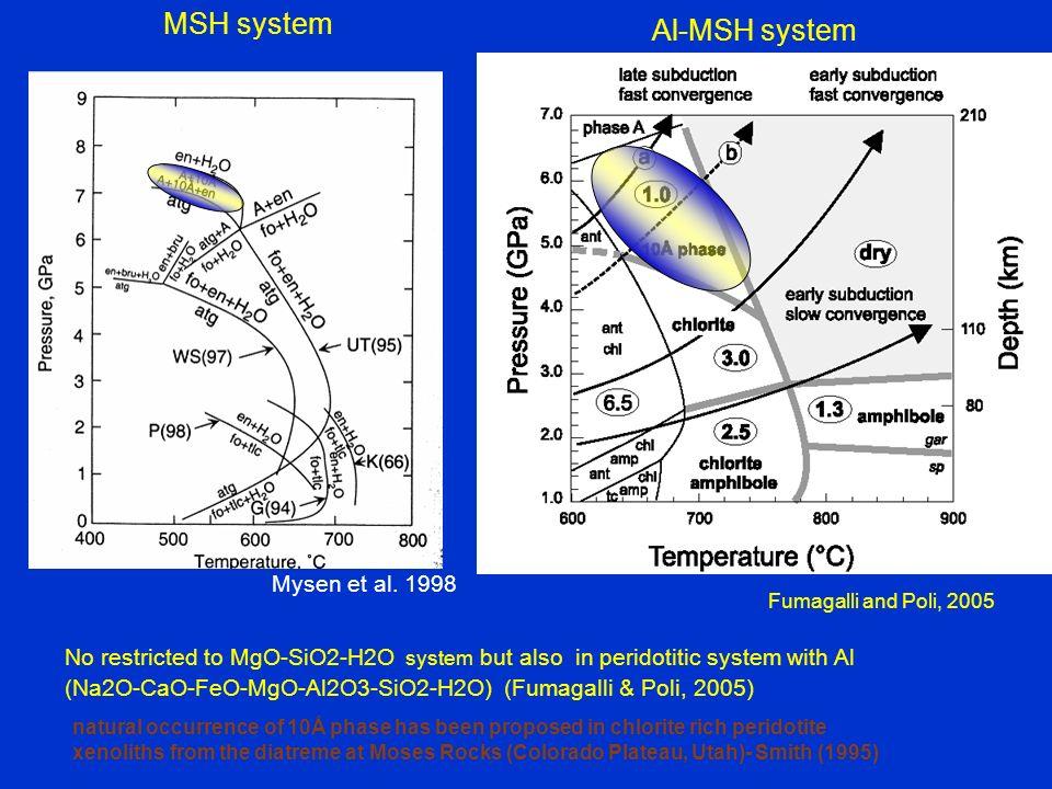 MSH system Al-MSH system Mysen et al. 1998