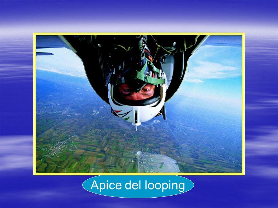 Apice del looping