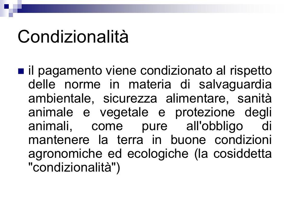 Condizionalità