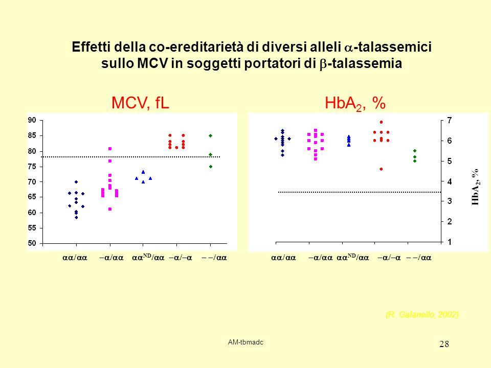 Effetti della co-ereditarietà di diversi alleli a-talassemici sullo MCV in soggetti portatori di b-talassemia
