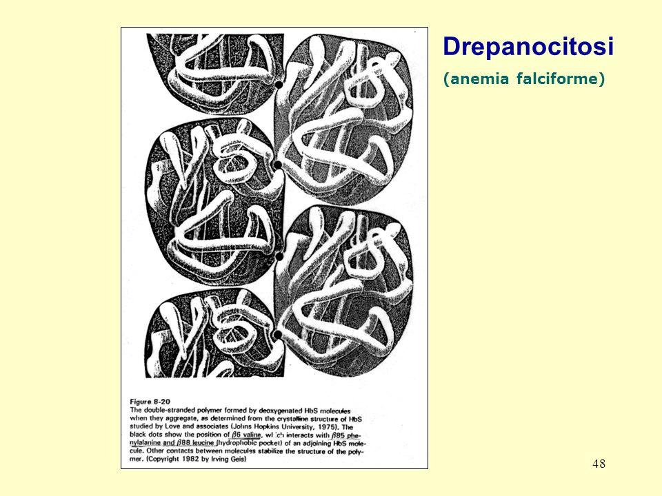 Drepanocitosi (anemia falciforme) AM-tbmadc
