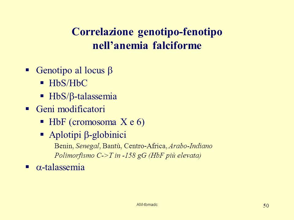 Correlazione genotipo-fenotipo nell'anemia falciforme