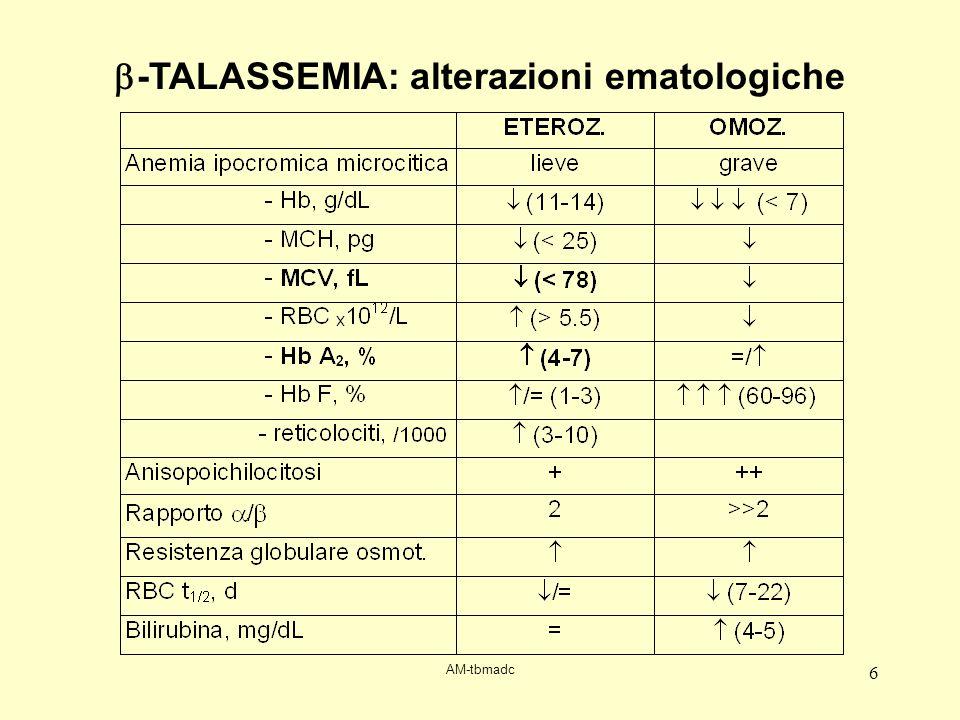 b-TALASSEMIA: alterazioni ematologiche