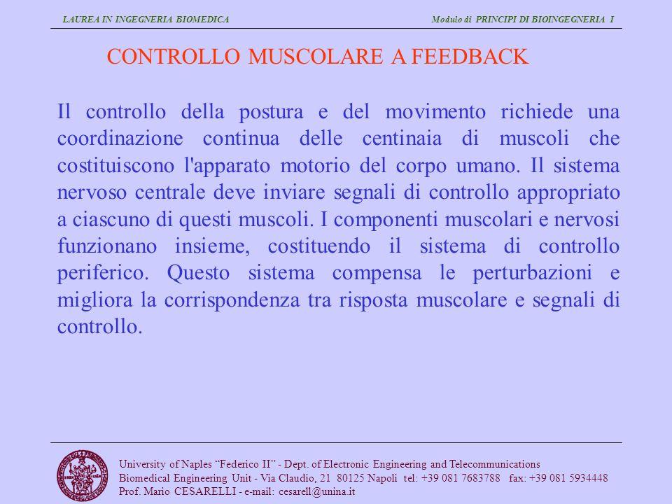 CONTROLLO MUSCOLARE A FEEDBACK