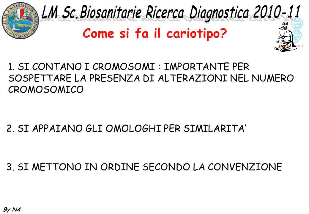 Come si fa il cariotipo 1. SI CONTANO I CROMOSOMI : IMPORTANTE PER SOSPETTARE LA PRESENZA DI ALTERAZIONI NEL NUMERO CROMOSOMICO.
