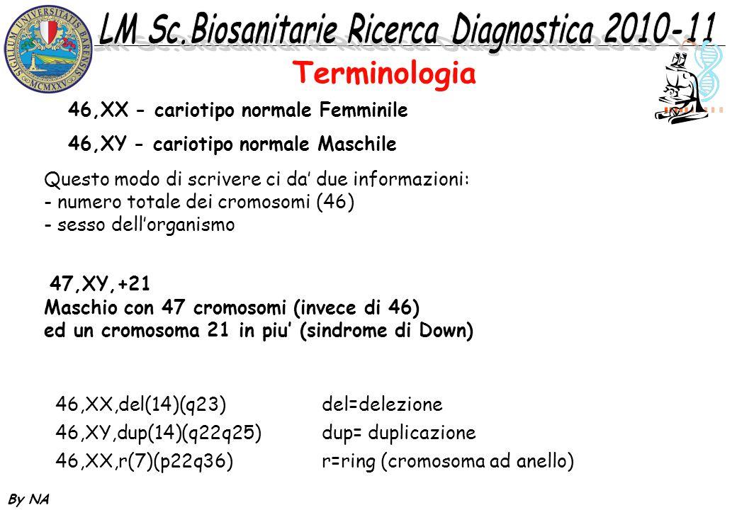 Terminologia 46,XX - cariotipo normale Femminile