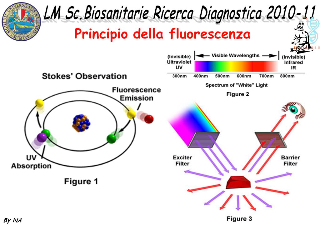 Principio della fluorescenza