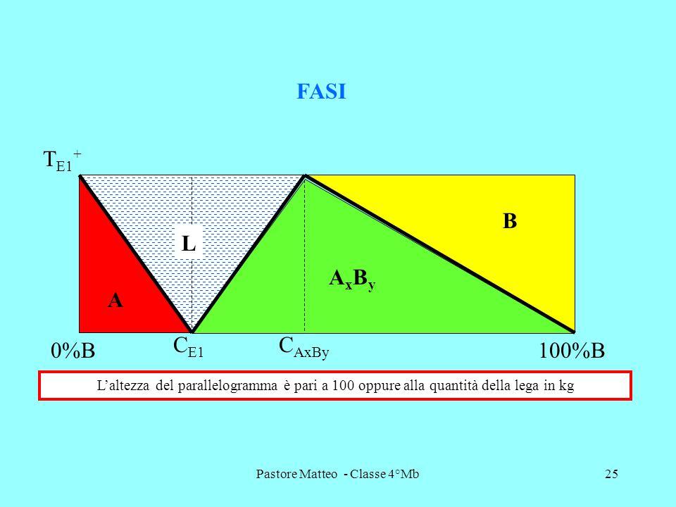 Pastore Matteo - Classe 4°Mb