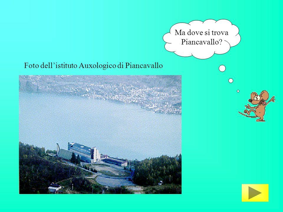 Ma dove si trova Piancavallo