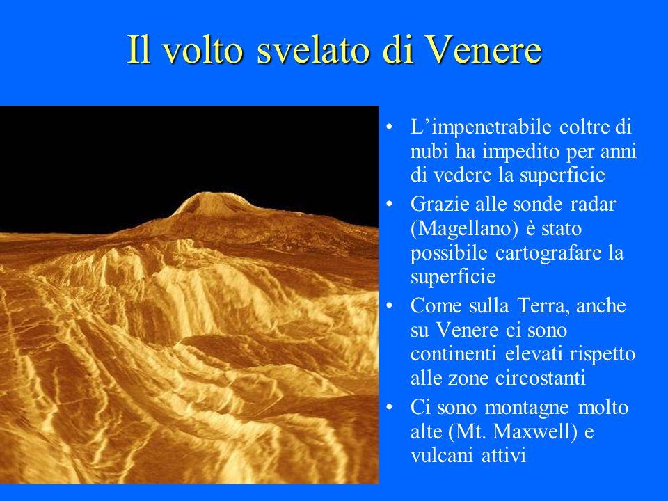 Il volto svelato di Venere