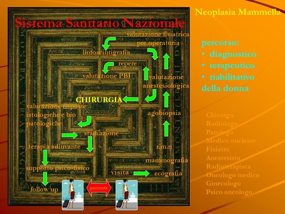 Sistema Sanitario Nazionale valutazione fisiatrica