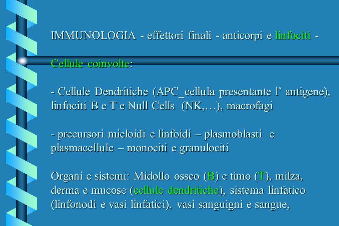 IMMUNOLOGIA - effettori finali - anticorpi e linfociti - Cellule coinvolte: - Cellule Dendritiche (APC_cellula presentante l' antigene), linfociti B e T e Null Cells (NK,…), macrofagi - precursori mieloidi e linfoidi – plasmoblasti e plasmacellule – monociti e granulociti Organi e sistemi: Midollo osseo (B) e timo (T), milza, derma e mucose (cellule dendritiche), sistema linfatico (linfonodi e vasi linfatici), vasi sanguigni e sangue,