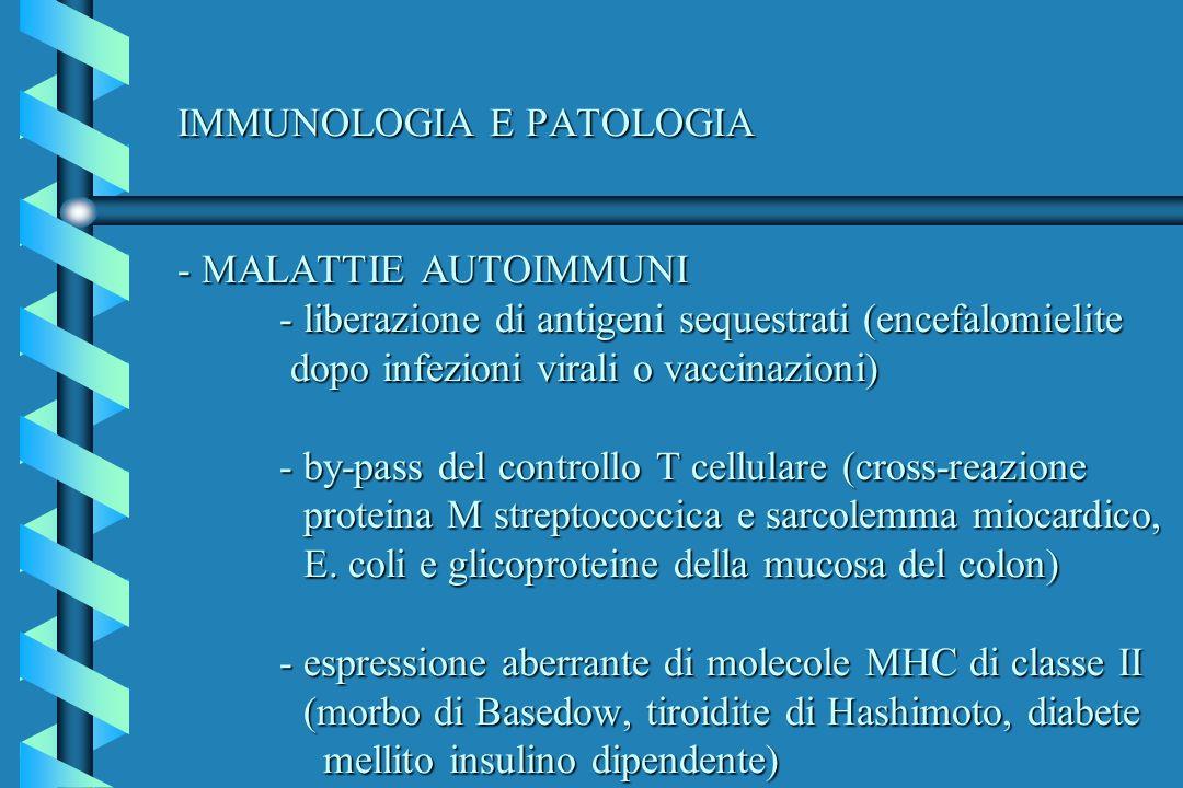 IMMUNOLOGIA E PATOLOGIA - MALATTIE AUTOIMMUNI - liberazione di antigeni sequestrati (encefalomielite dopo infezioni virali o vaccinazioni) - by-pass del controllo T cellulare (cross-reazione proteina M streptococcica e sarcolemma miocardico, E.