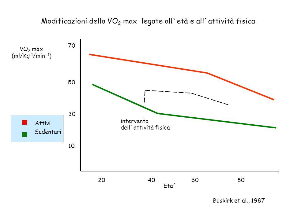 Modificazioni della VO2 max legate all`età e all`attività fisica
