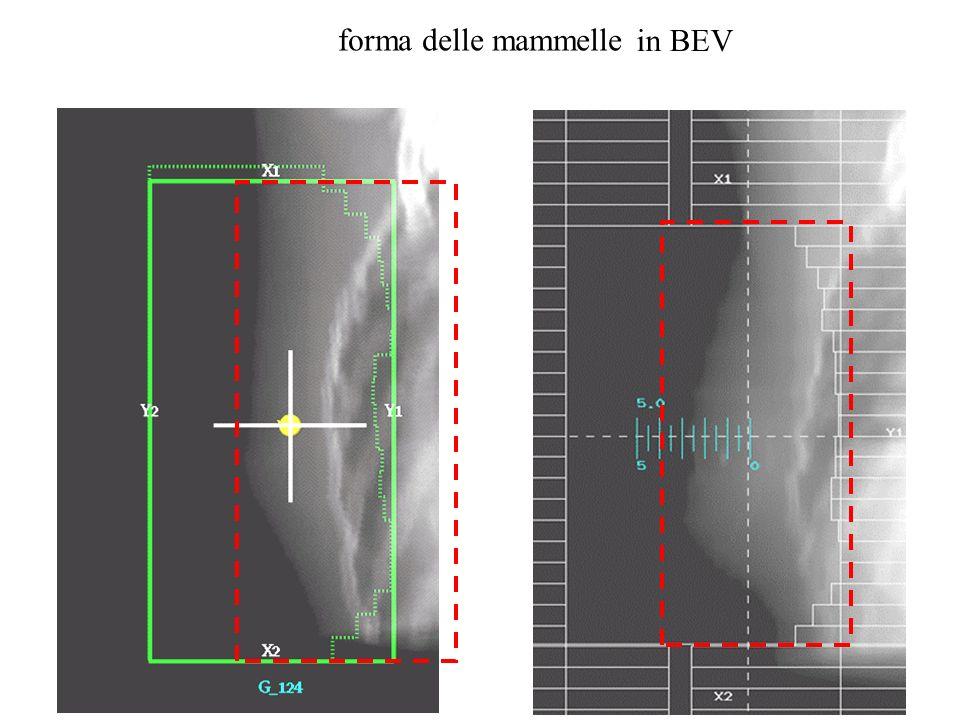 forma delle mammelle in BEV