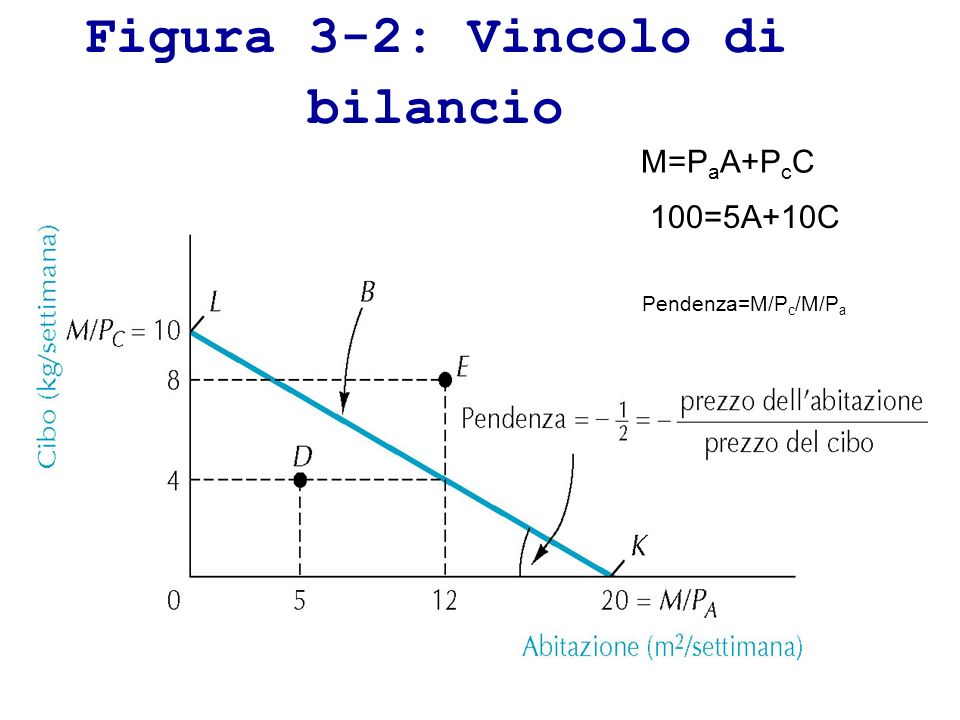 Figura 3-2: Vincolo di bilancio