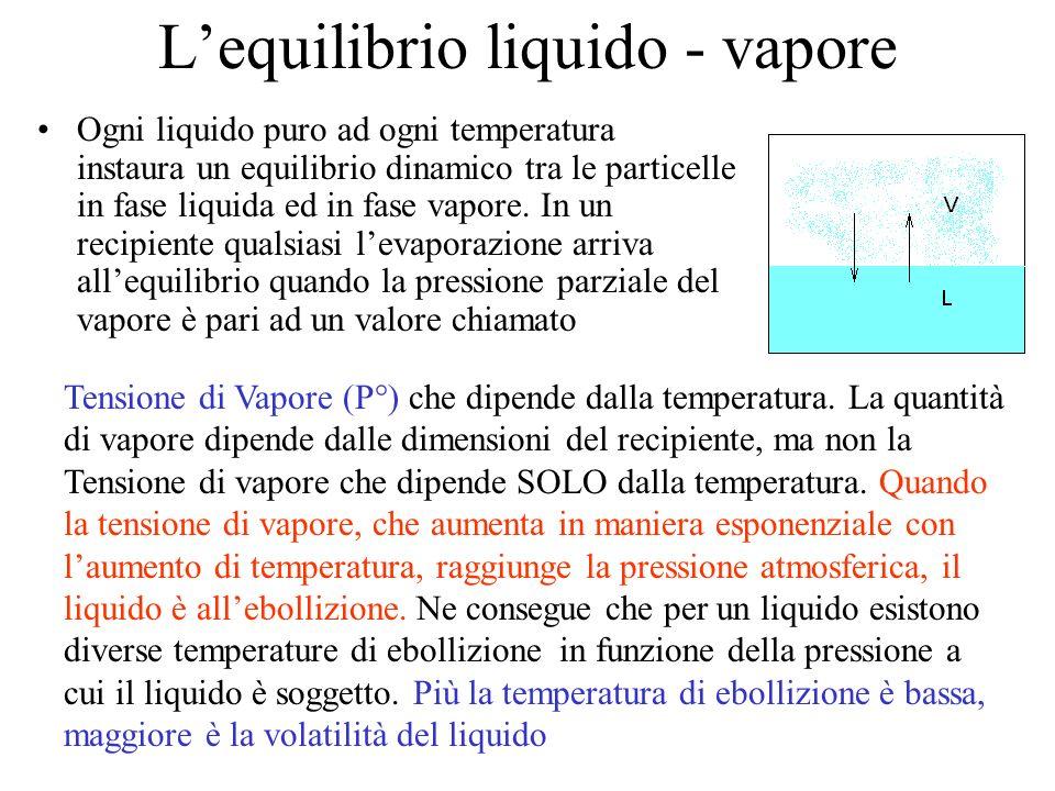 L'equilibrio liquido - vapore