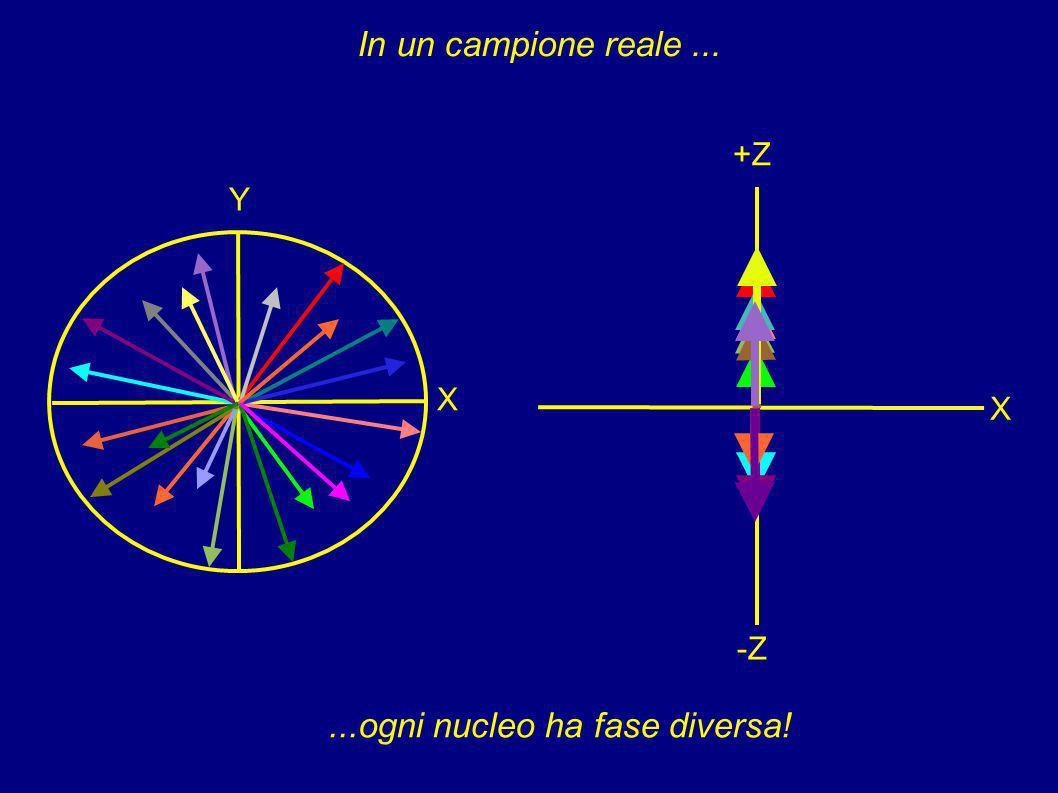 ...ogni nucleo ha fase diversa!