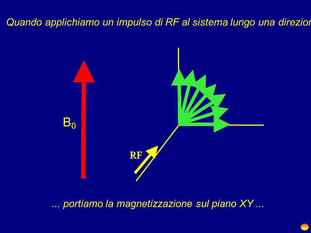 Quando applichiamo un impulso di RF al sistema lungo una direzione adeguata ...