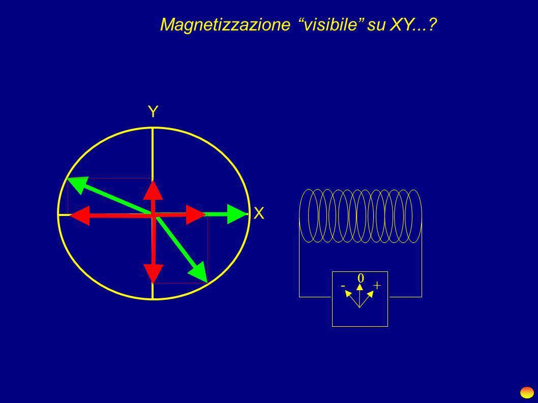 Magnetizzazione visibile su XY...