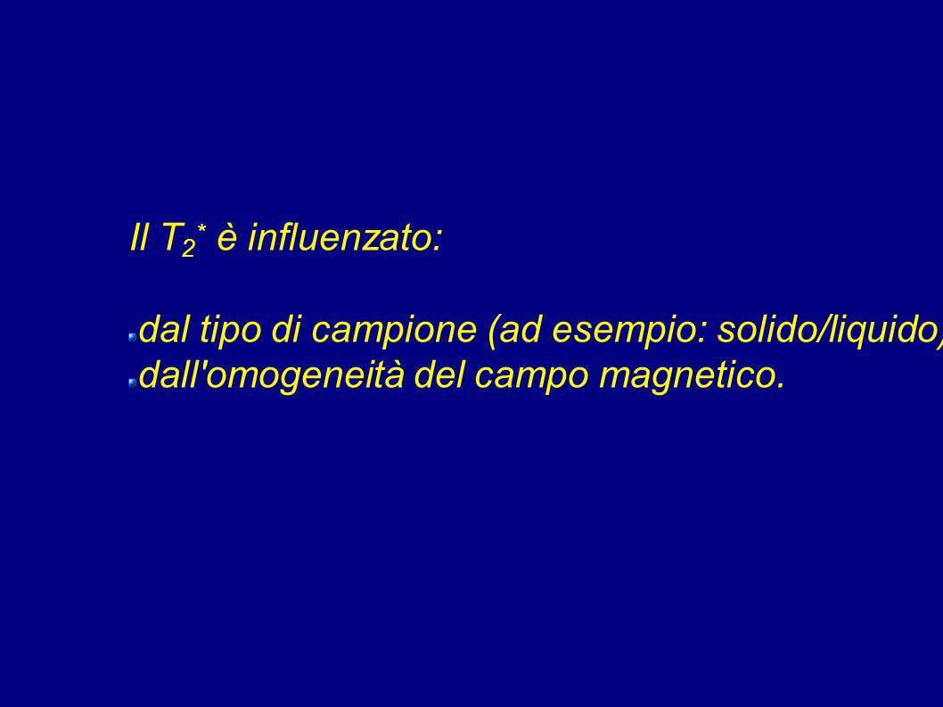 Il T2* è influenzato: dal tipo di campione (ad esempio: solido/liquido); dall omogeneità del campo magnetico.