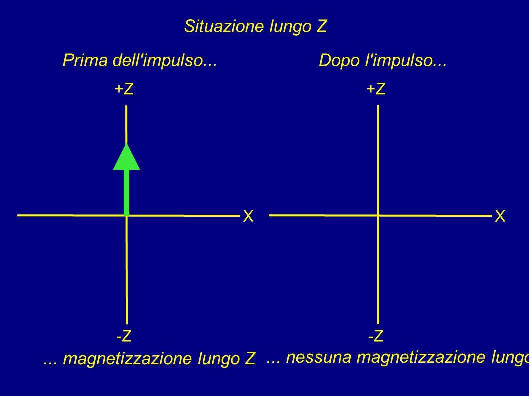 ... magnetizzazione lungo Z ... nessuna magnetizzazione lungo Z