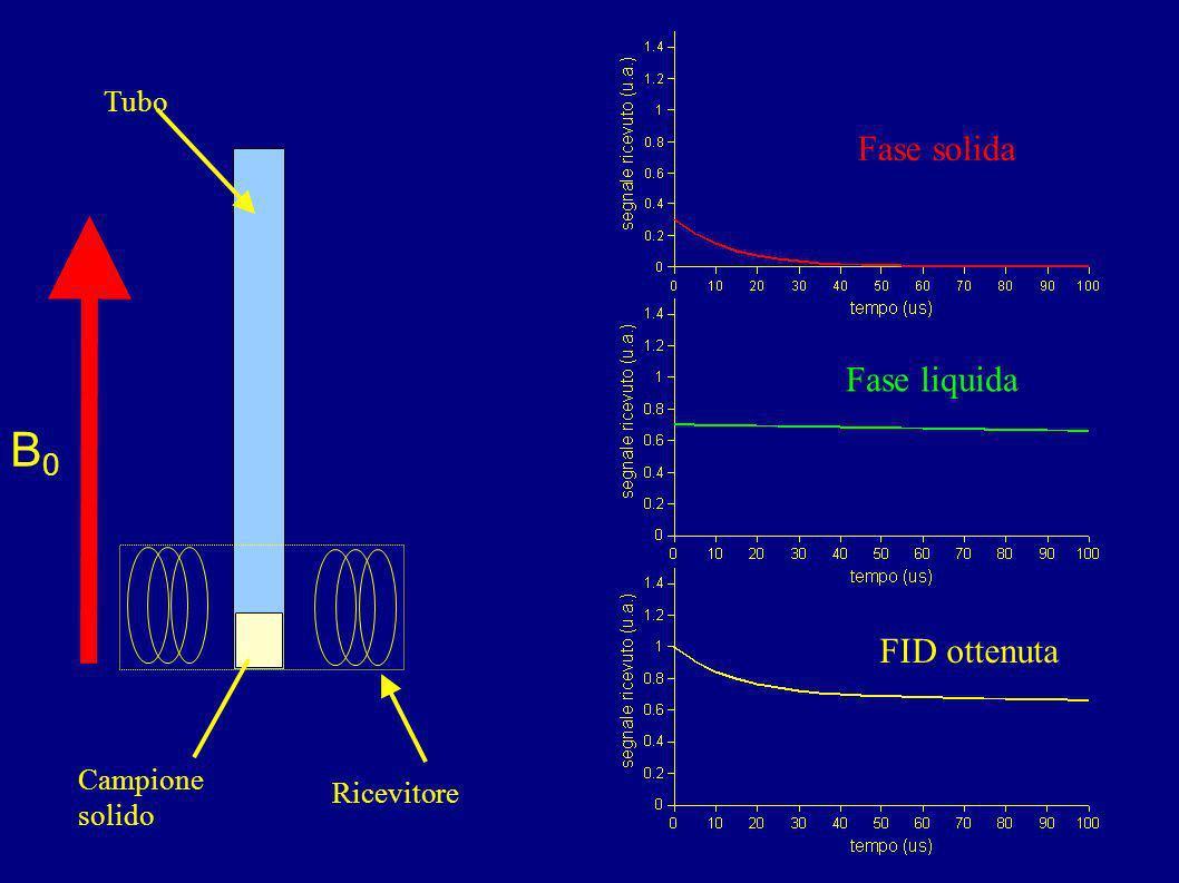 B0 Fase solida Fase liquida FID ottenuta Tubo Campione solido