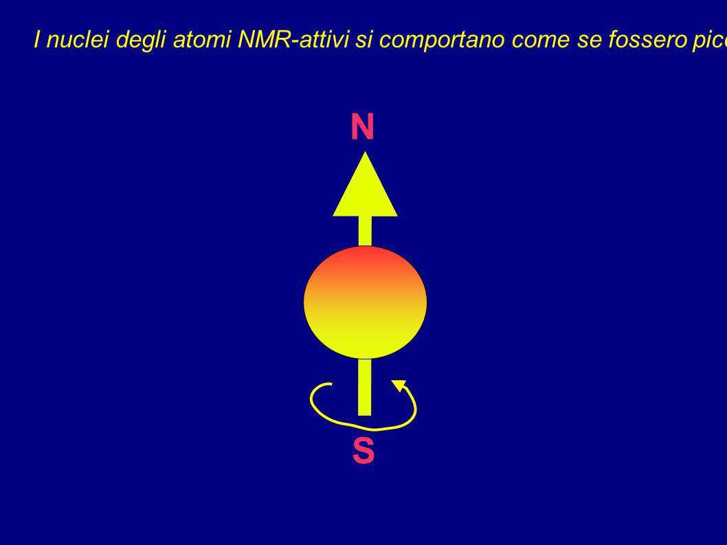 I nuclei degli atomi NMR-attivi si comportano come se fossero piccoli magneti