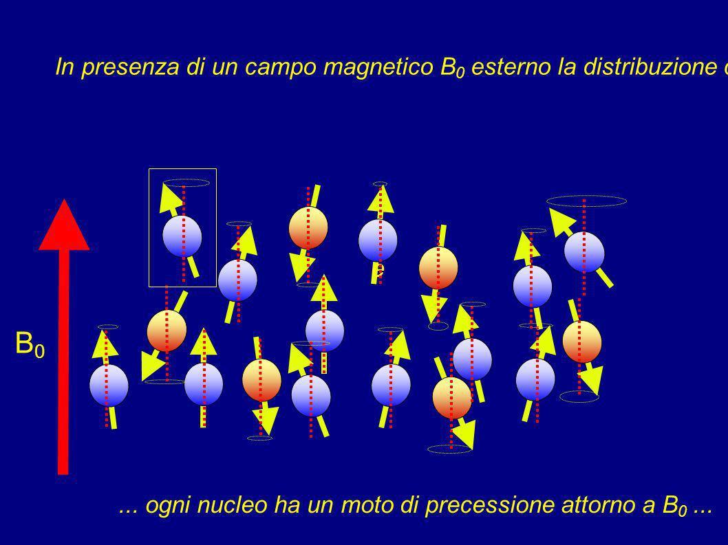 In presenza di un campo magnetico B0 esterno la distribuzione cambia ...