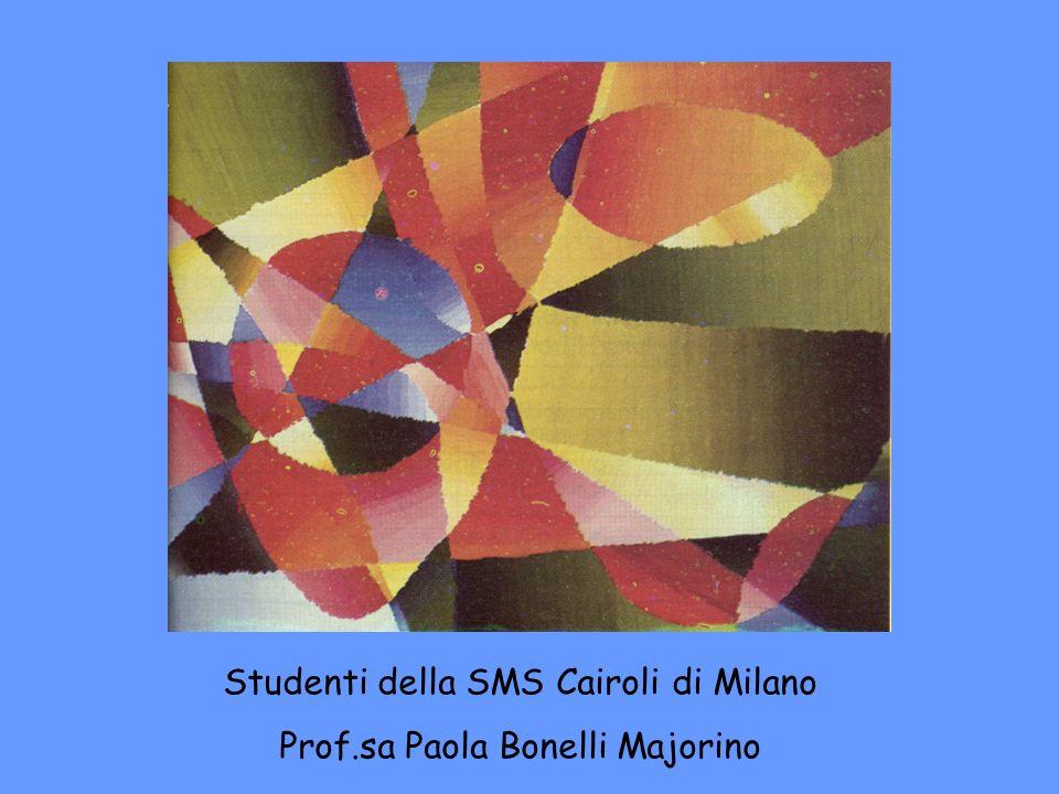Studenti della SMS Cairoli di Milano Prof.sa Paola Bonelli Majorino