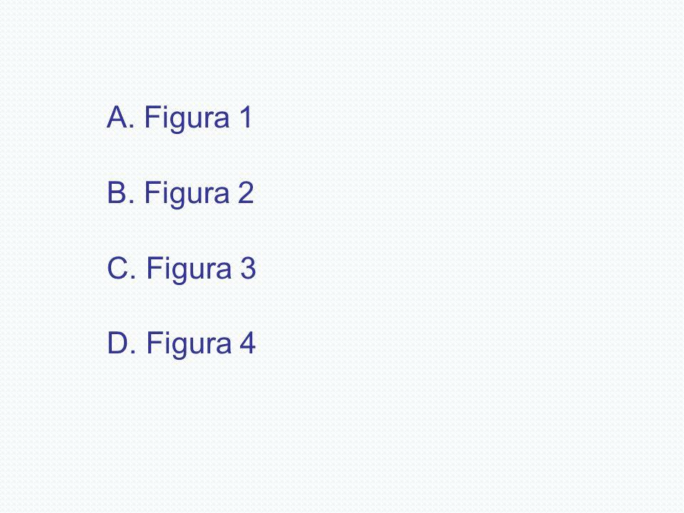 Figura 1 Figura 2 Figura 3 Figura 4