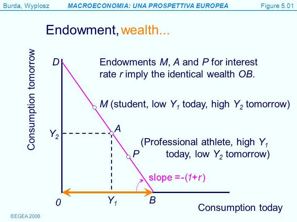Figure 5.1 Endowment, wealth... D B