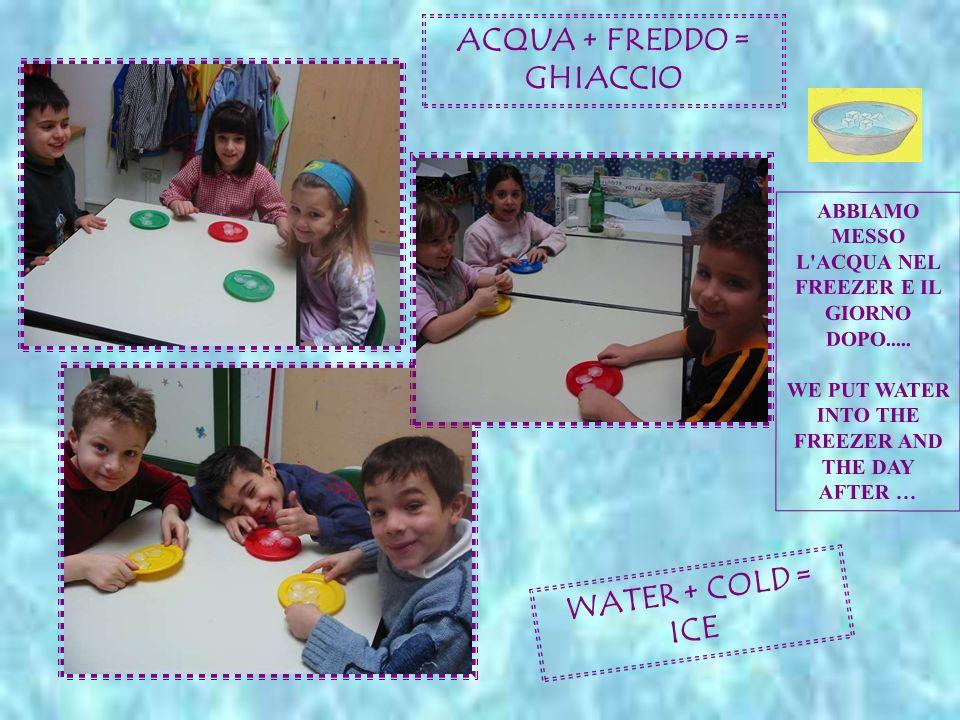 ACQUA + FREDDO = GHIACCIO WATER + COLD = ICE