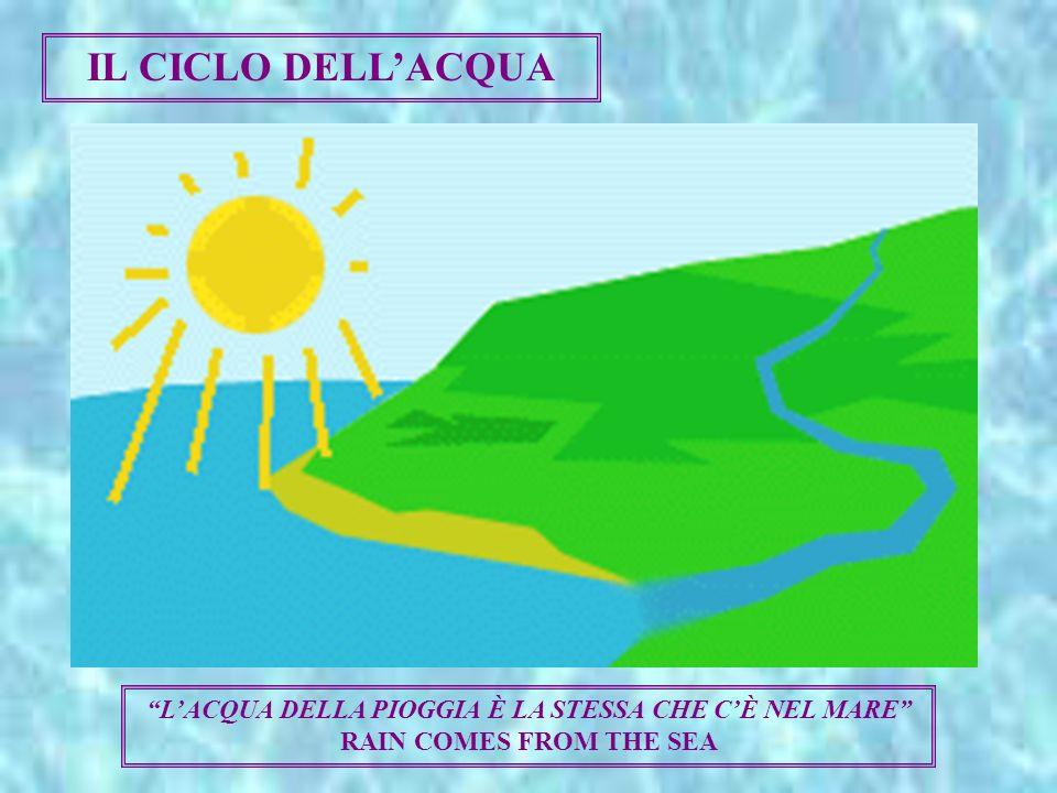IL CICLO DELL'ACQUA L'ACQUA DELLA PIOGGIA È LA STESSA CHE C'È NEL MARE RAIN COMES FROM THE SEA