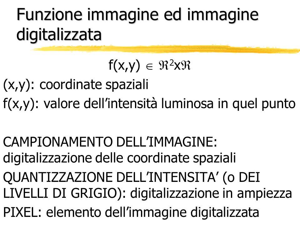 Funzione immagine ed immagine digitalizzata