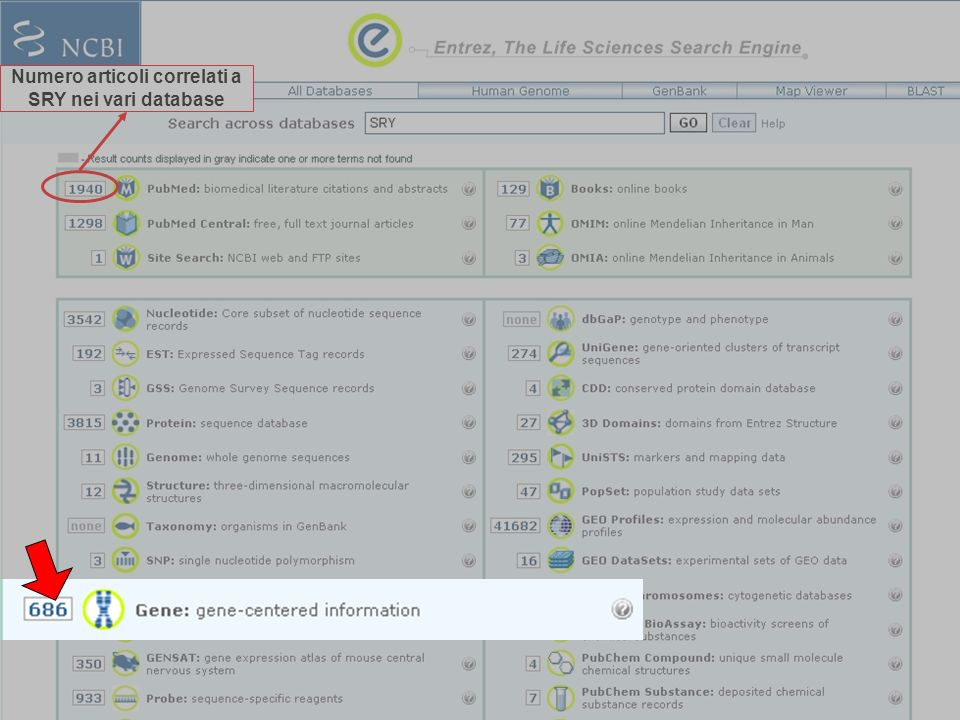 Numero articoli correlati a SRY nei vari database