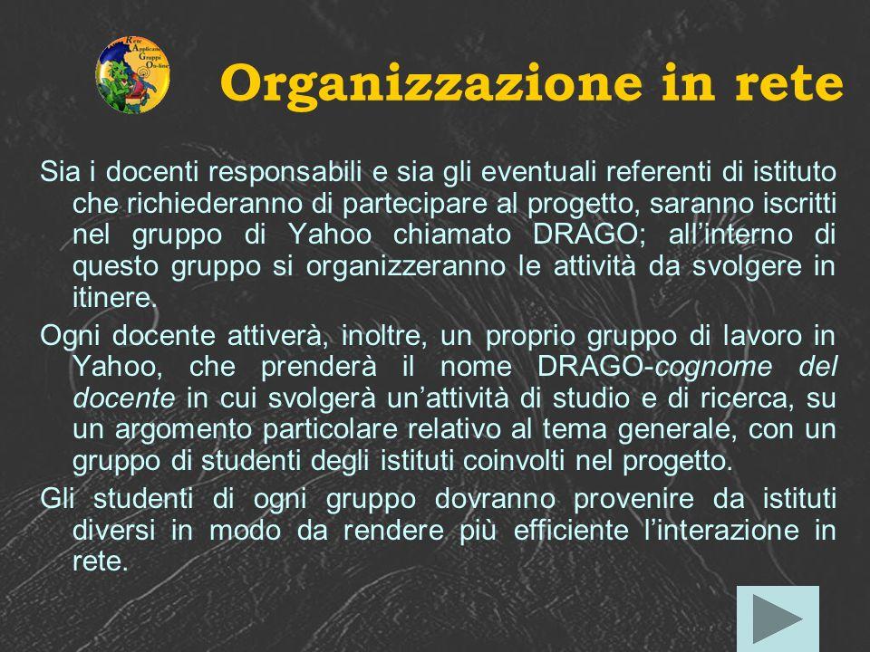 Organizzazione in rete