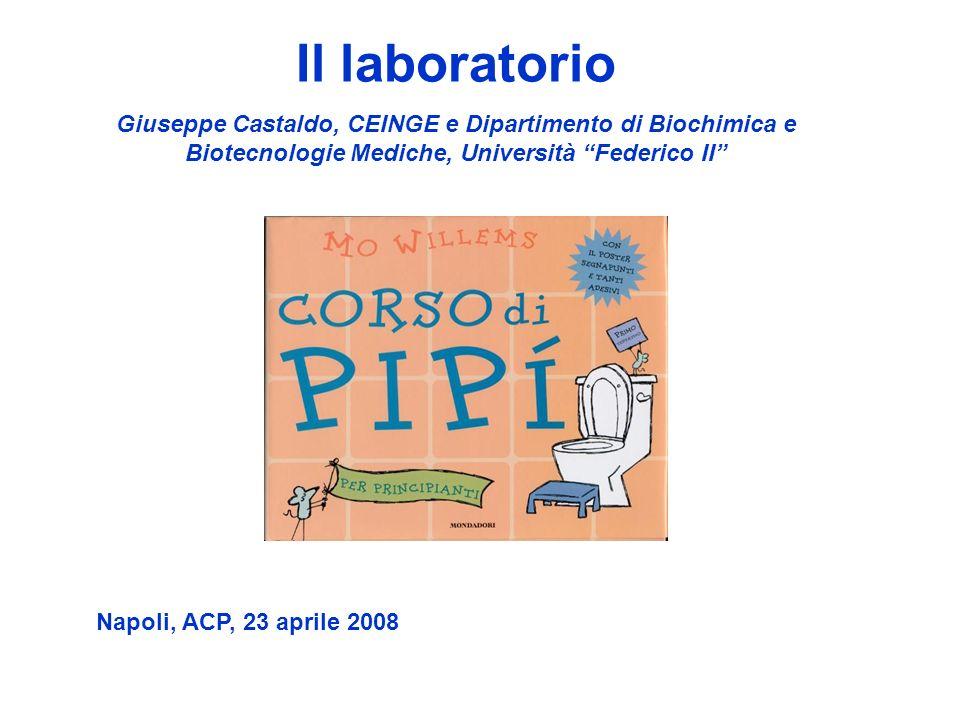 Il laboratorio Giuseppe Castaldo, CEINGE e Dipartimento di Biochimica e Biotecnologie Mediche, Università Federico II