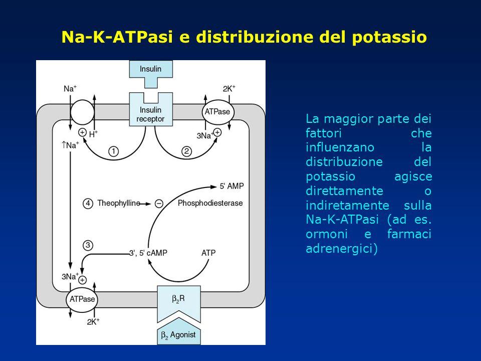 Na-K-ATPasi e distribuzione del potassio