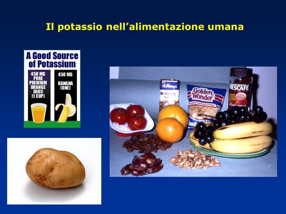 Il potassio nell'alimentazione umana