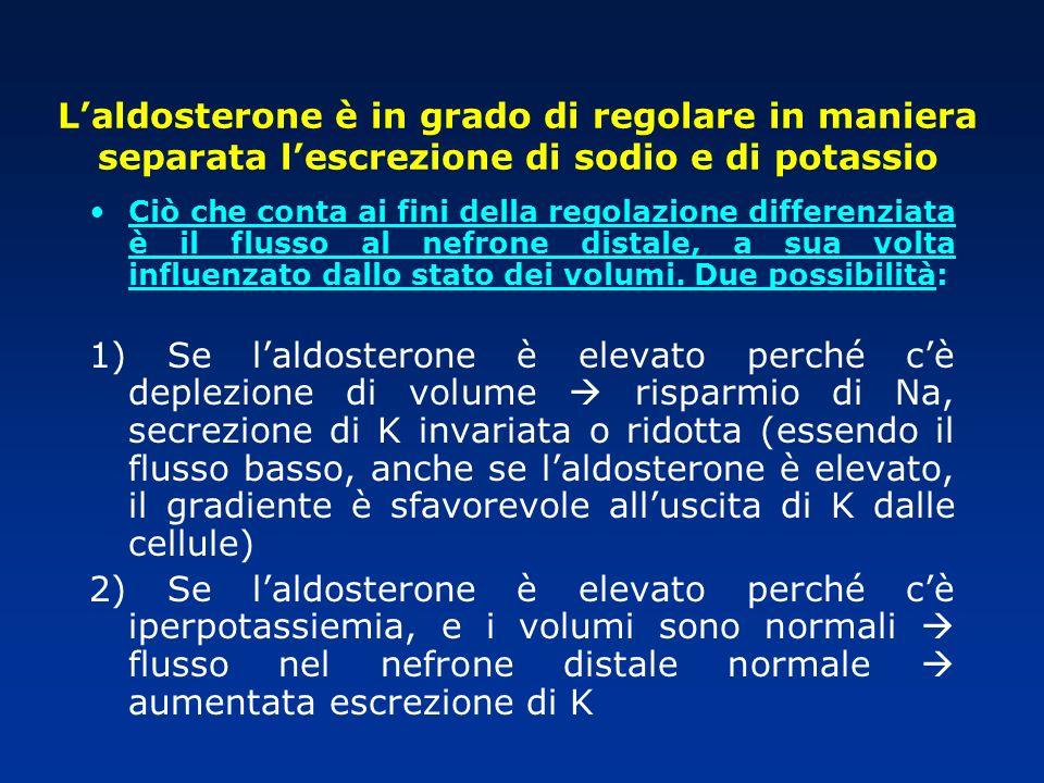 L'aldosterone è in grado di regolare in maniera separata l'escrezione di sodio e di potassio