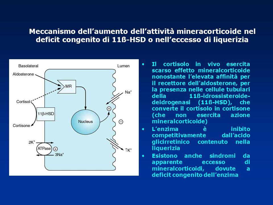 Meccanismo dell'aumento dell'attività mineracorticoide nel deficit congenito di 11ß-HSD o nell'eccesso di liquerizia