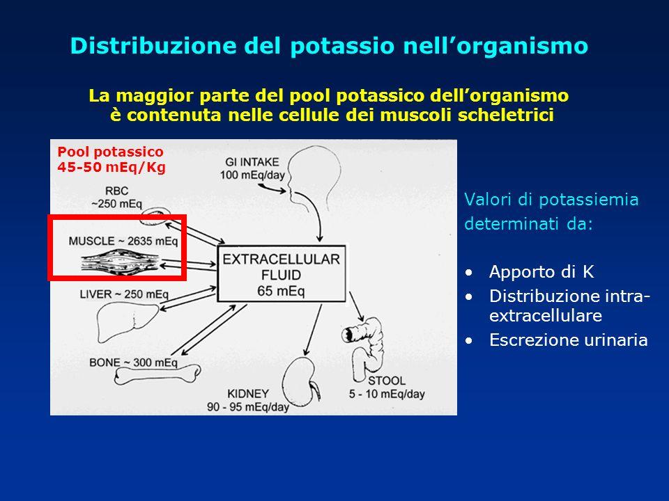 Pool potassico 45-50 mEq/Kg