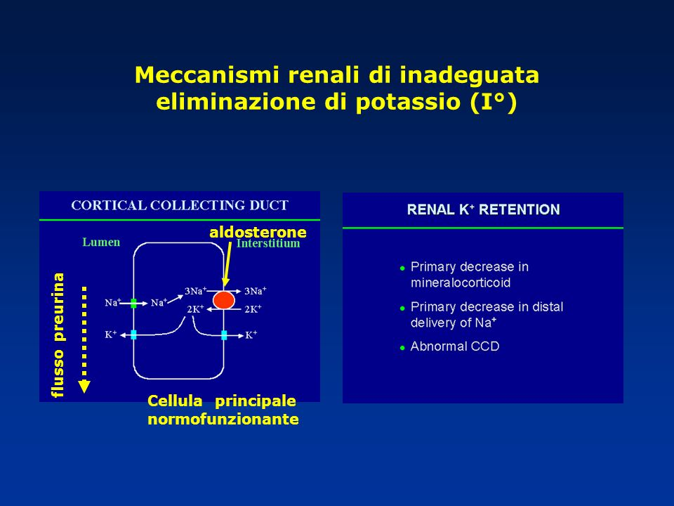 Meccanismi renali di inadeguata eliminazione di potassio (I°)