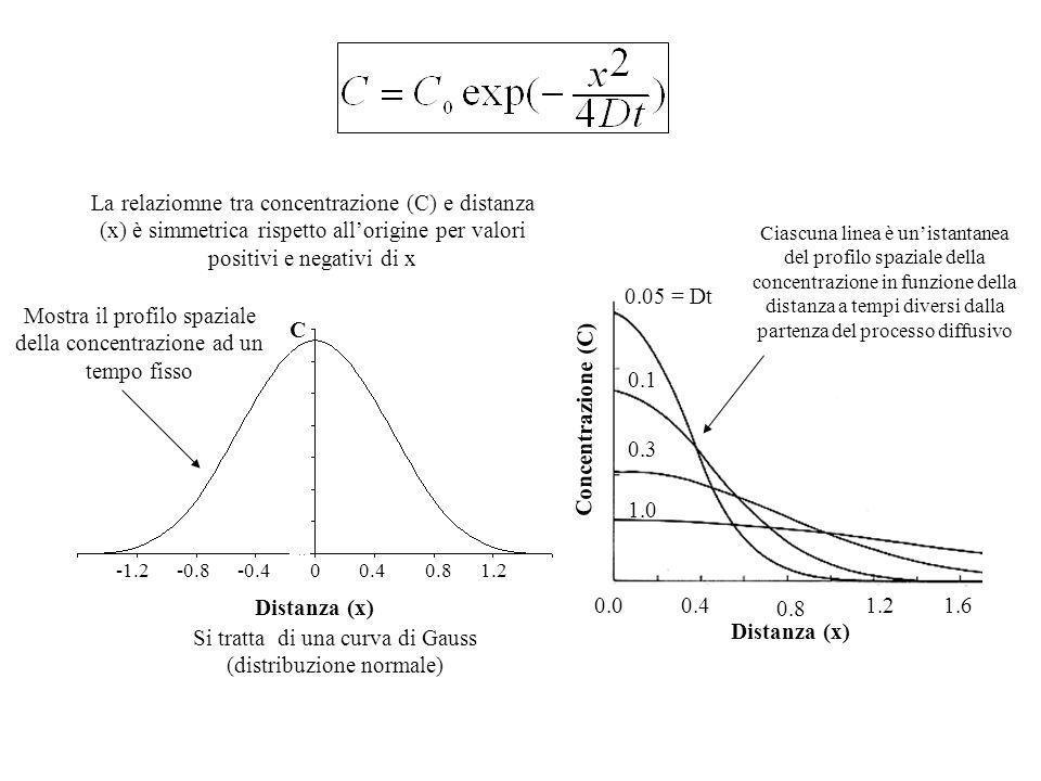 Distanza (x) Concentrazione (C)