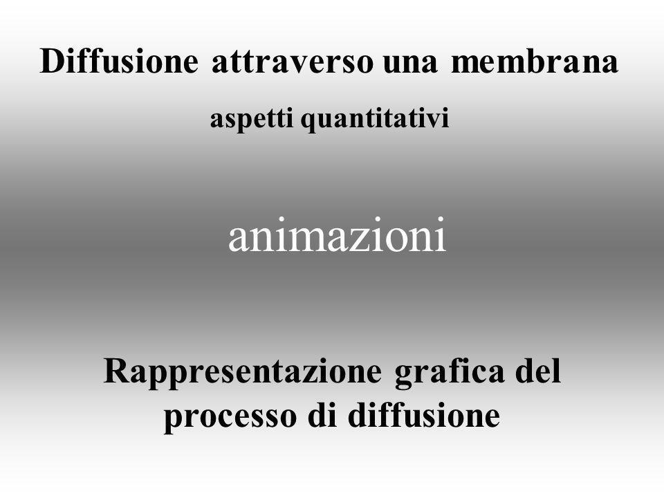 animazioni Diffusione attraverso una membrana