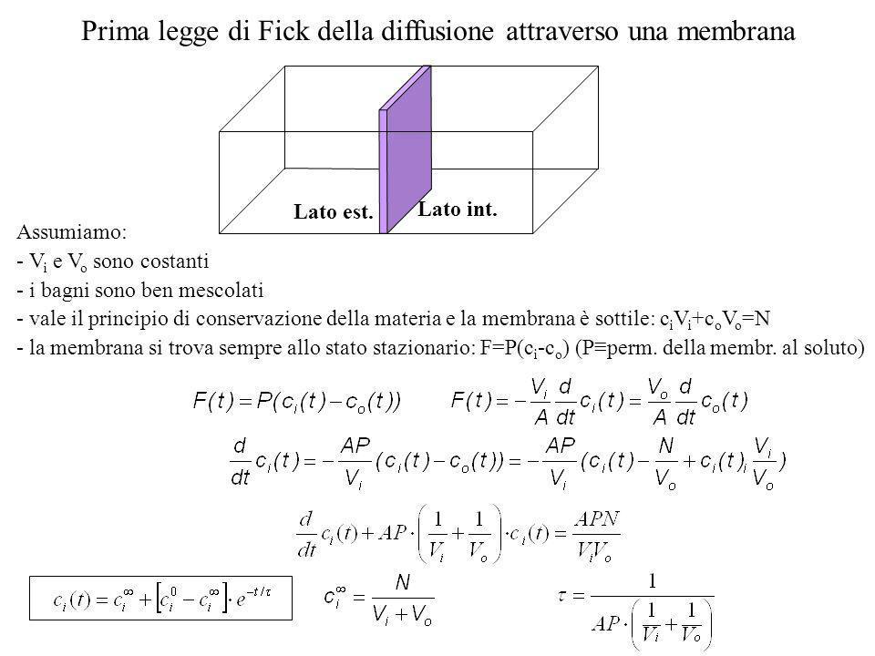 Prima legge di Fick della diffusione attraverso una membrana