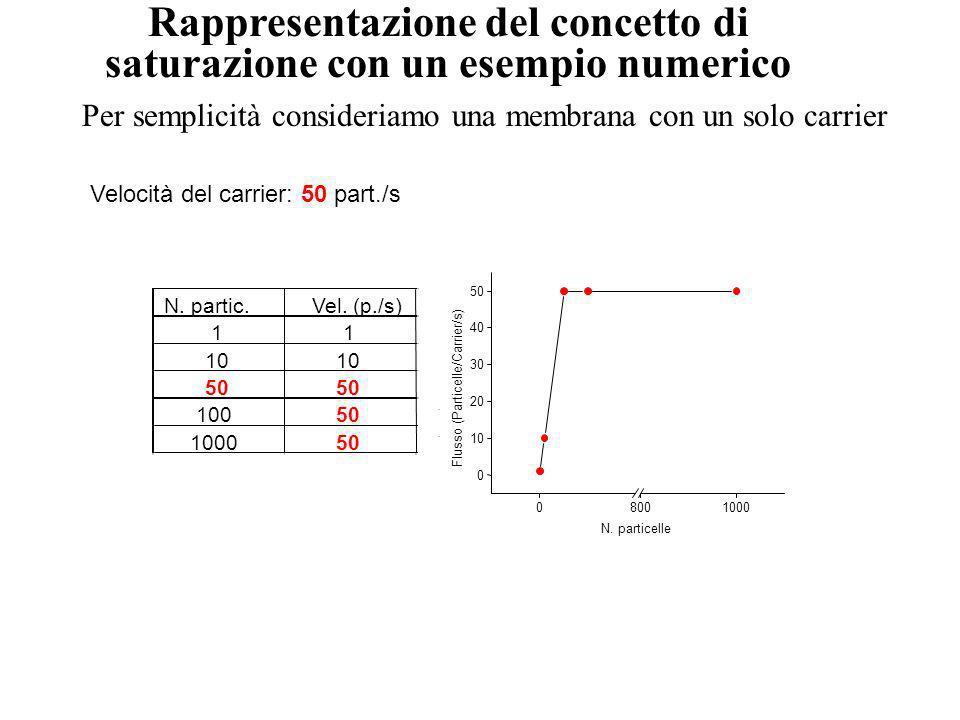 Rappresentazione del concetto di saturazione con un esempio numerico