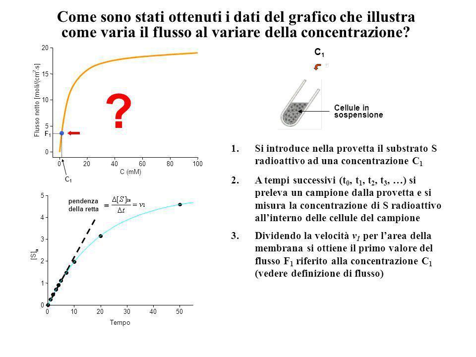 Come sono stati ottenuti i dati del grafico che illustra come varia il flusso al variare della concentrazione